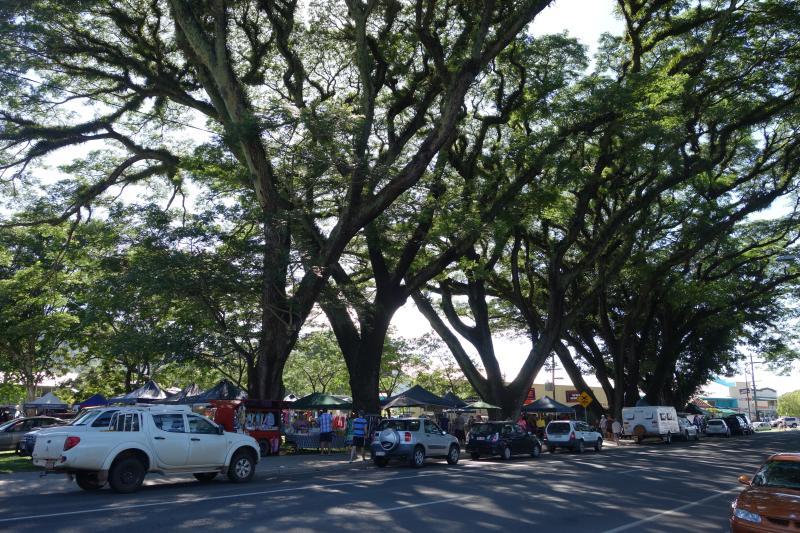 Marché de Mossman et arbres remarquables de pluie 5min de la maison