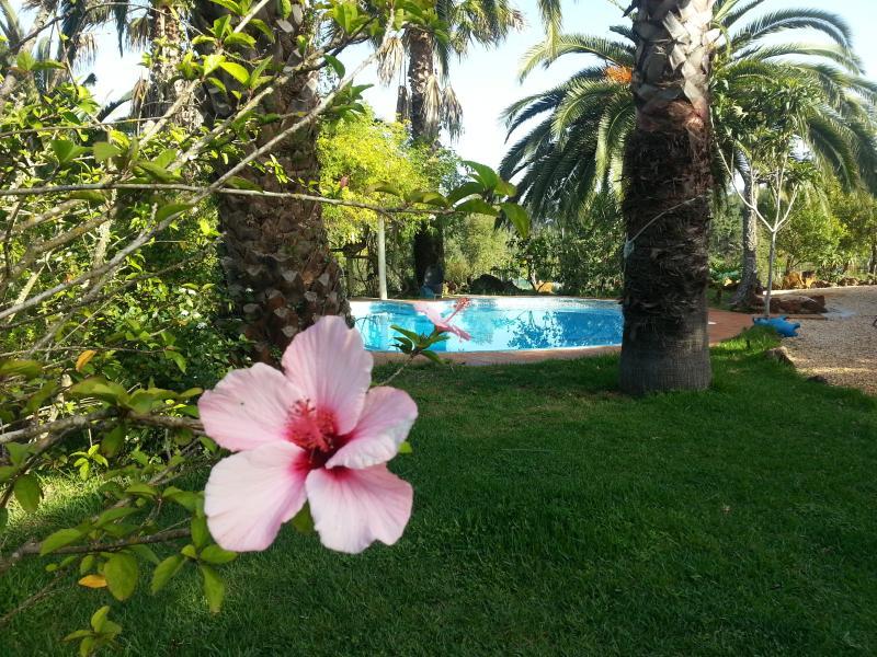 Casa Azulejos in einer Ferienanlage, holiday rental in Sao Teotonio