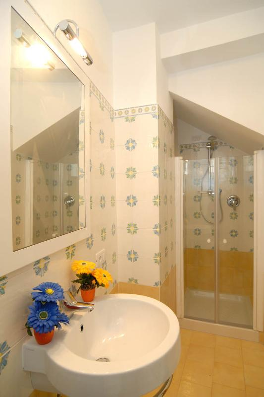 Downstairs ensuite  bathroom with shower