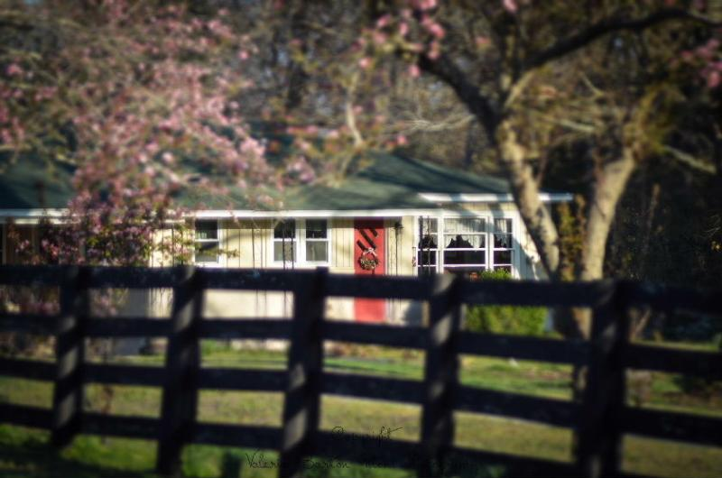 The Cottage at Stillwaters Farm--A FarmStay B&B, holiday rental in Henderson