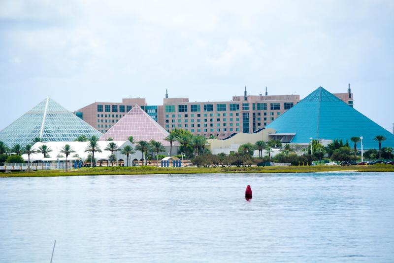 Moody Gardens, just a few miles away. Includes the Aquarium and Rainforest attraction.