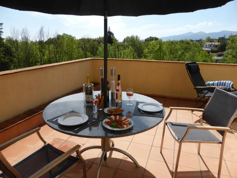 Dining on the large  private terrace / garden area
