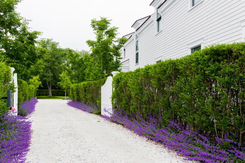 Strada privata semi-privata Gated, condivisa con Home Next Door