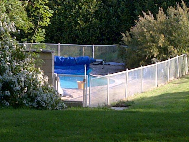 The pool, nestled in the garden
