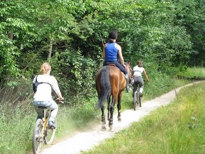 Cylclisme, VTT et équitation