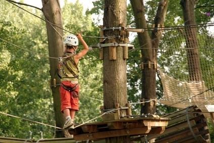 Accro-branche, parcours dans les arbres