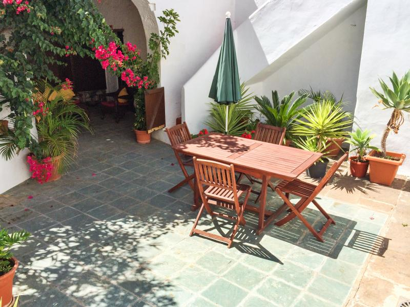 Spacious house with garden & Wifi, holiday rental in La Guancha