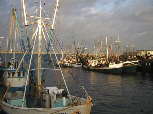 Picturesque Harbor