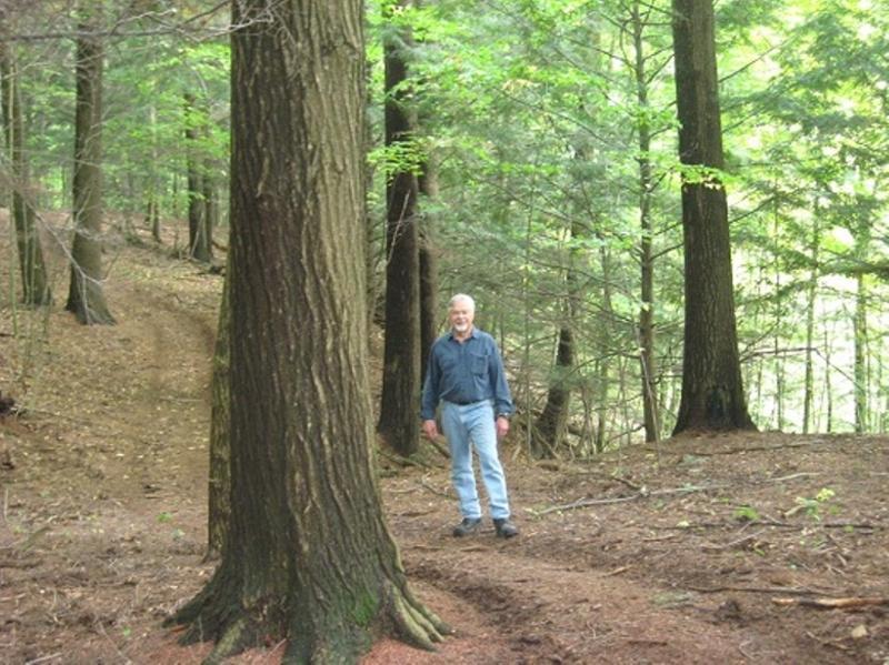 Nuestros bosques y senderos