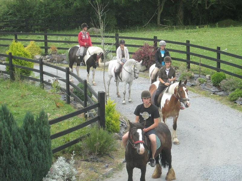 HORSE RIDING NEARBY.The centre is in the middle of the beautiful Irish countryside yet is very close