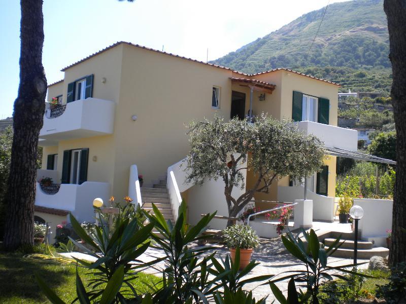 Villa Olivia Dream apartment with pool