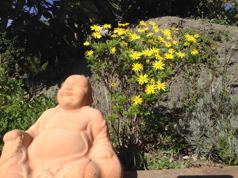 Utforska trädgården i vår lugna dalen