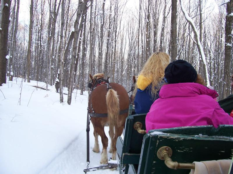 Sleigh rides at Schuss Mountain ski resort - 20 minutes drive from Central Lake.
