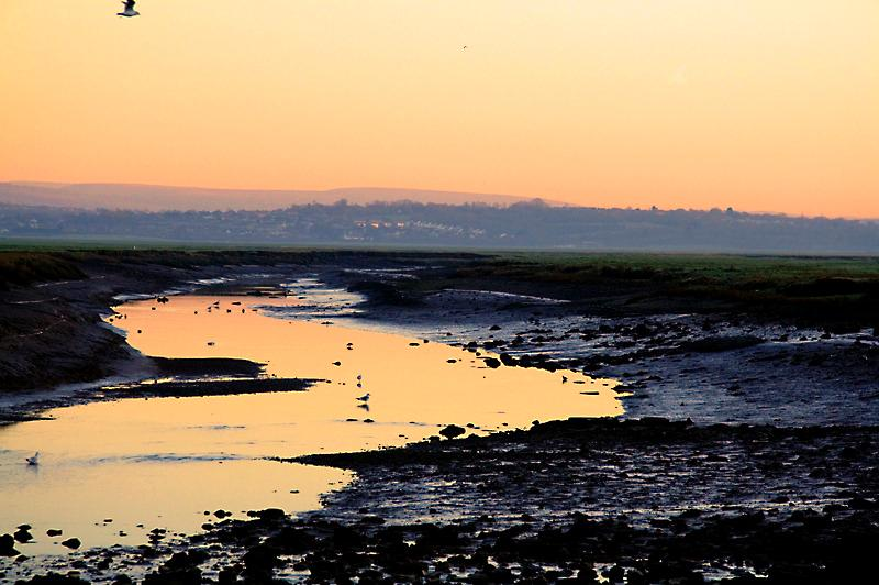 Loughor Estuary (just across the road, 200 yds)