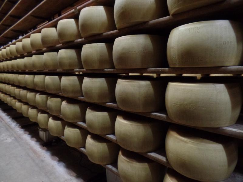 Parmiggiano Reggiano cheese in a storage room, many to visit in the area