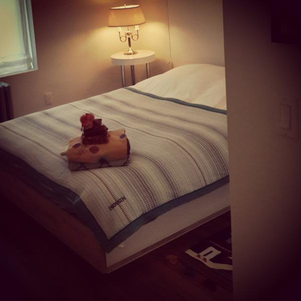 brand new queen size bed with therapeutic mattress