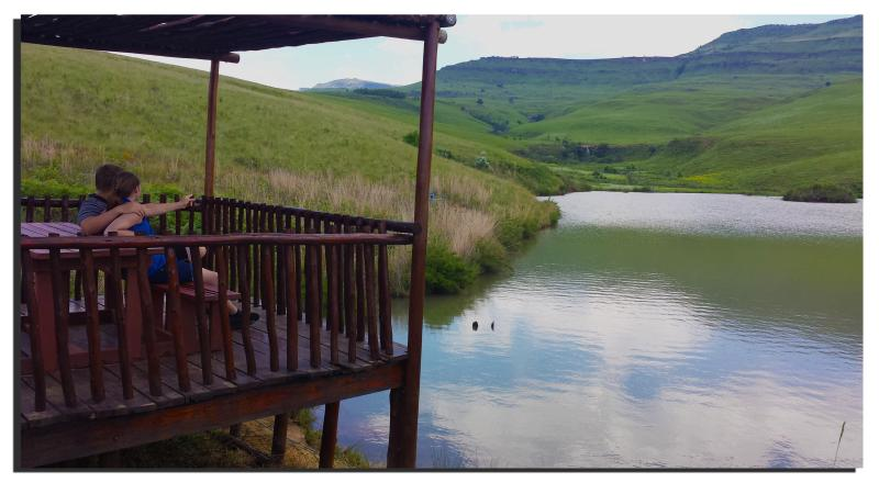 Fishing dam on the estate.