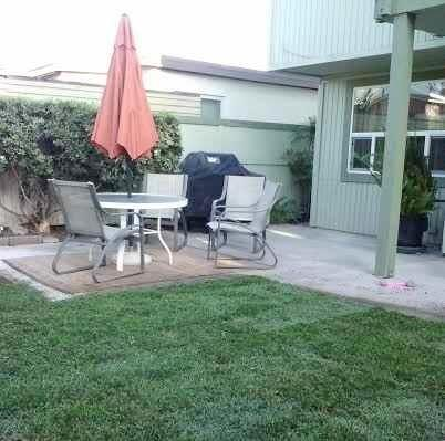 back yard dining area with Weber gas barbeque