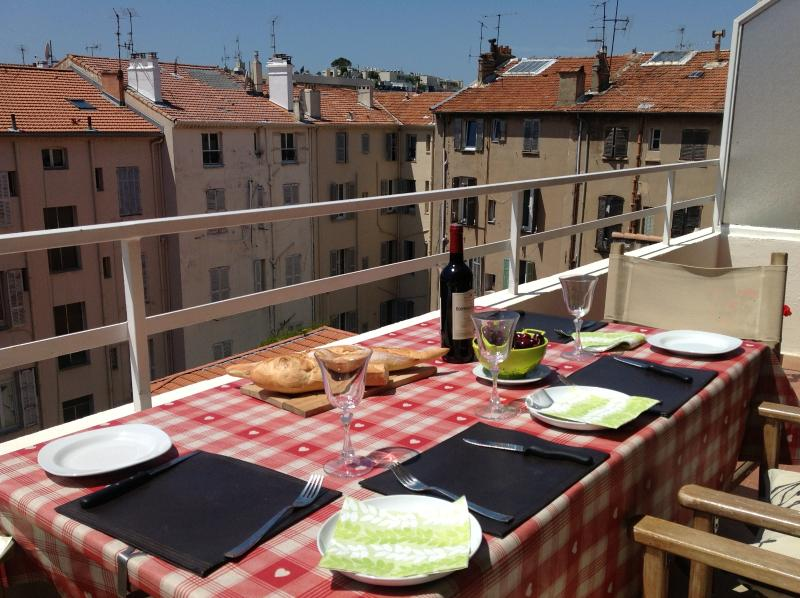 South Facing with Large Terrace, vacation rental in Cannes