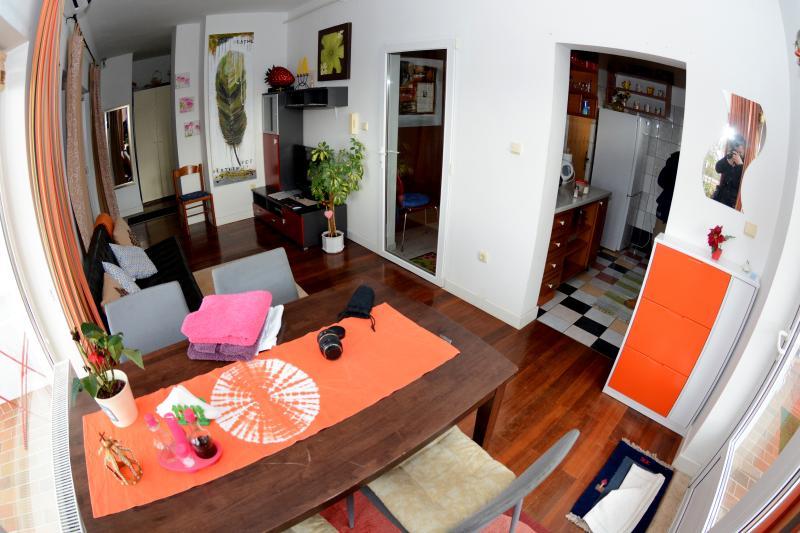 Deluxe 2 Bedroom Apartment, 4 Persons, vacation rental in Zapresic