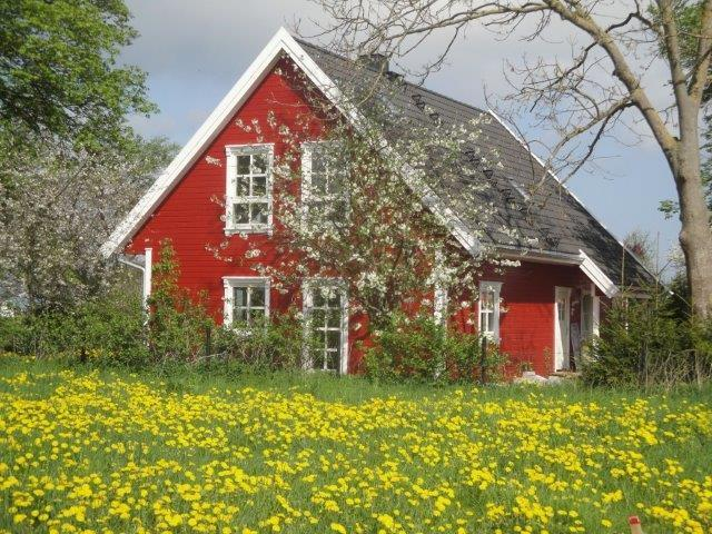 Schwedenhaus am Bodden, holiday rental in Gross Mohrdorf