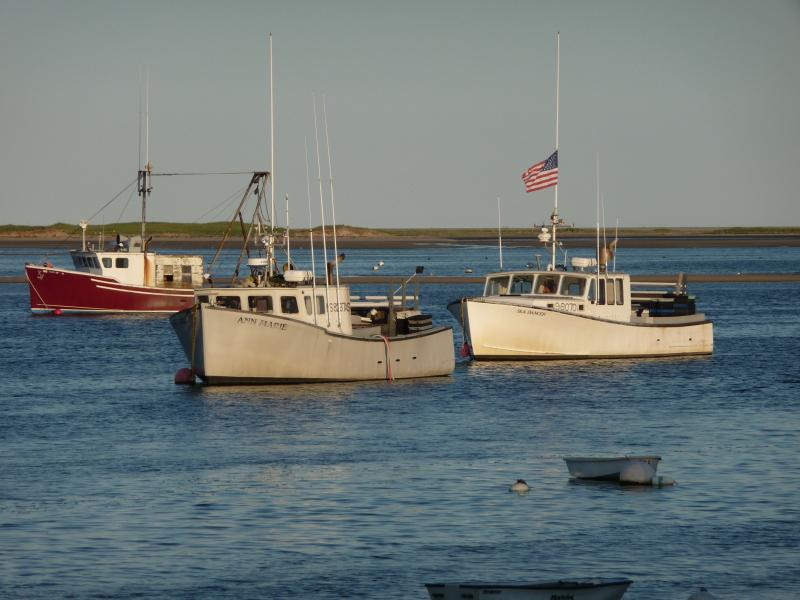 Commercial and sport fishing available in Chatham less than 3 miles away