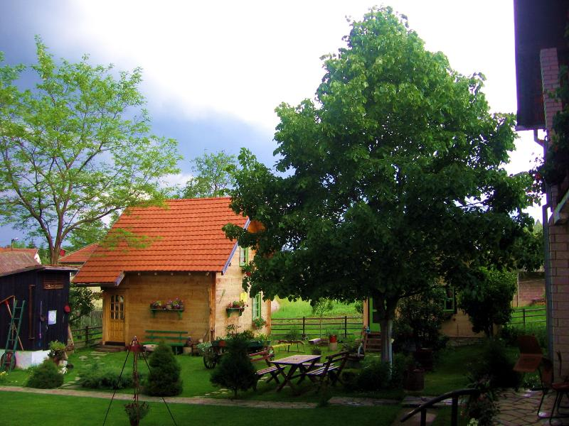Apartmens - VILA SELENA - GOLIJA, holiday rental in Central Serbia