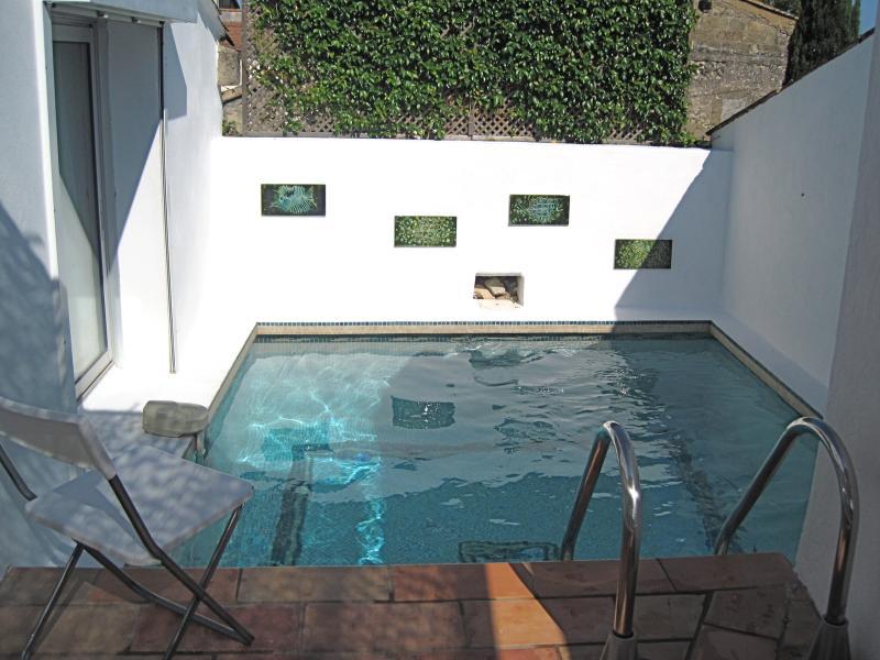 La Trobairitz - con piscina e terrazza sul tetto