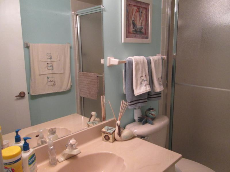 Master ensuite washroom with large walk-in  shower stall