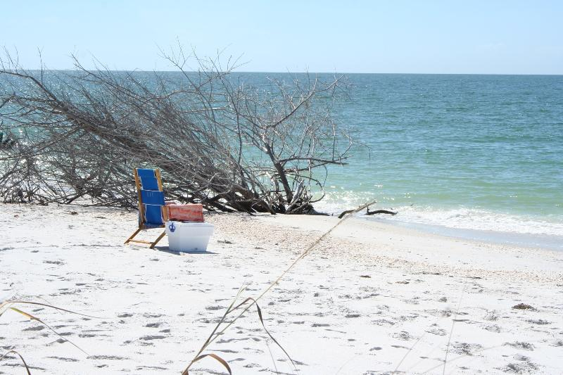 Enjoy the most pristine white sand beaches in all of Florida.