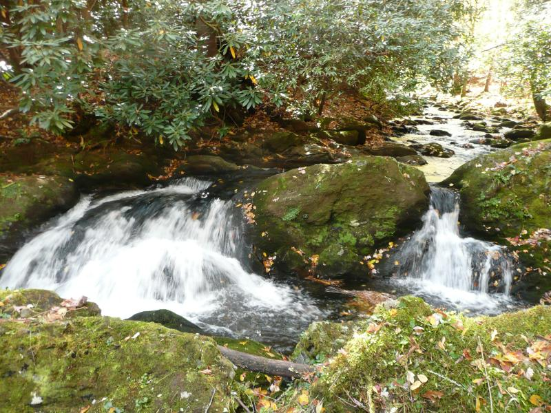 Rushing Waters Cabin-Romantic Waterfall Cabin, location de vacances à Gatlinburg