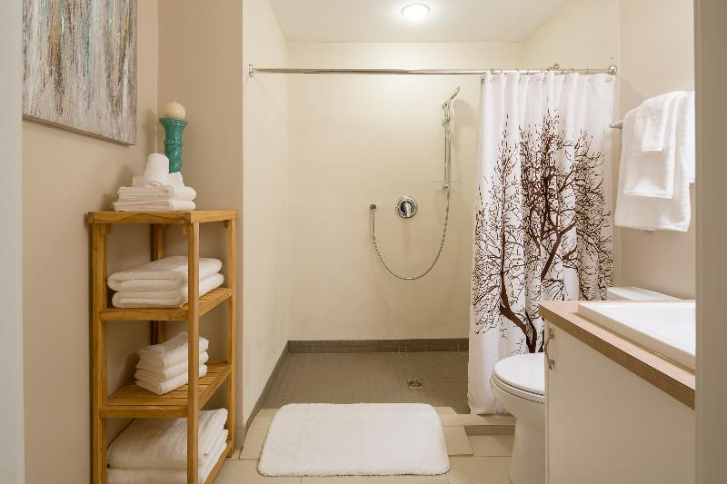 fresh clean bathroom and wheelchair accessible shower