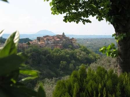 Charming old-style apartment in medieval village, location de vacances à Palombara Sabina