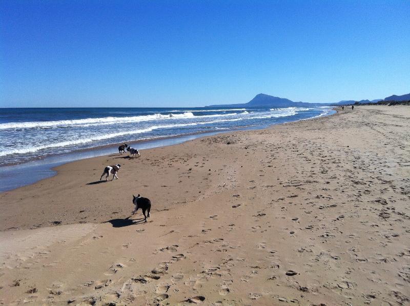 Dunes Beach, from Piles to Pto Deportivo de Oliva, pleasant walk
