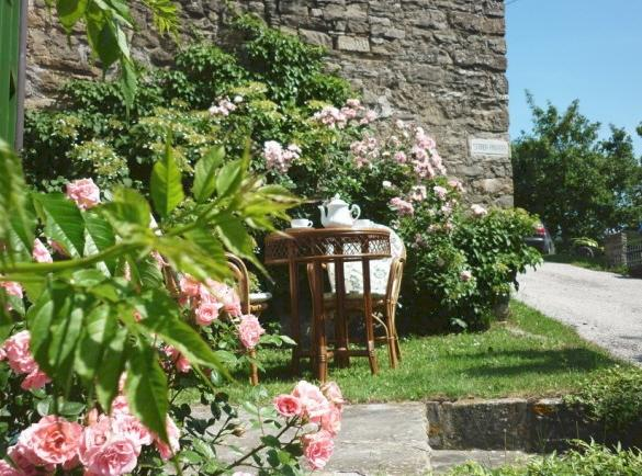 Wildroses place near living door