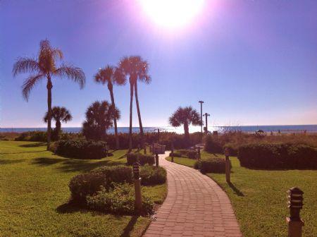 Sunny Beach Path