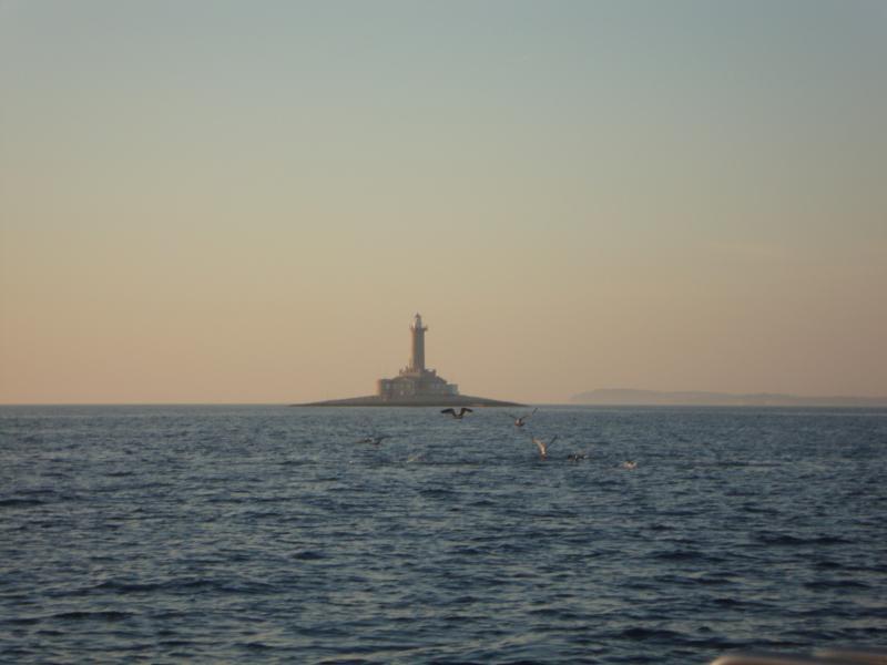 Lighthouse Porer and seagulls having dinner :)
