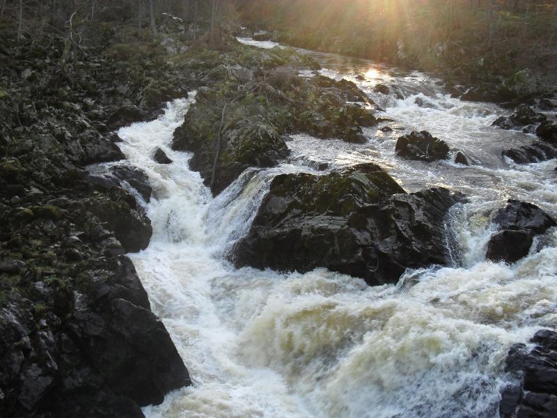 Falls of Feugh