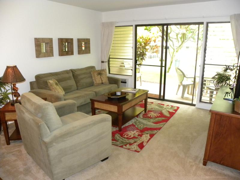 Living Area with Queen Sleeper Sofa & Big Screen TV / Lanai with Large Grass Area