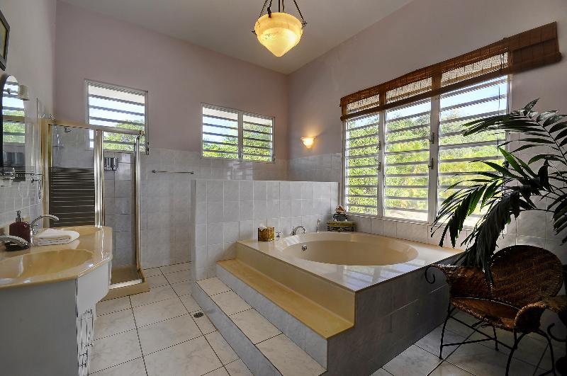 Master Suite Bathroom and Soaking Tub