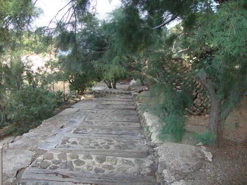 Scala di accesso al mare tra la vegetazione mediterranea