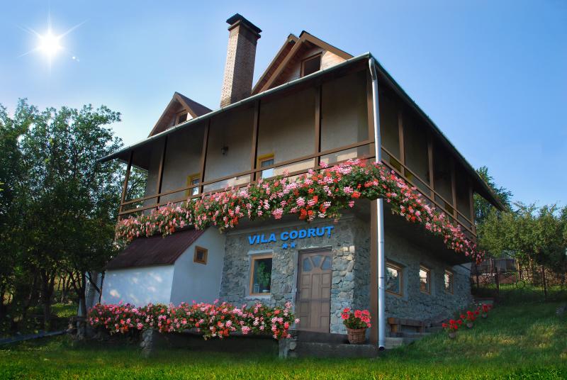 Cabana Codrut - a chalet in Dracula's land, holiday rental in Hunedoara County