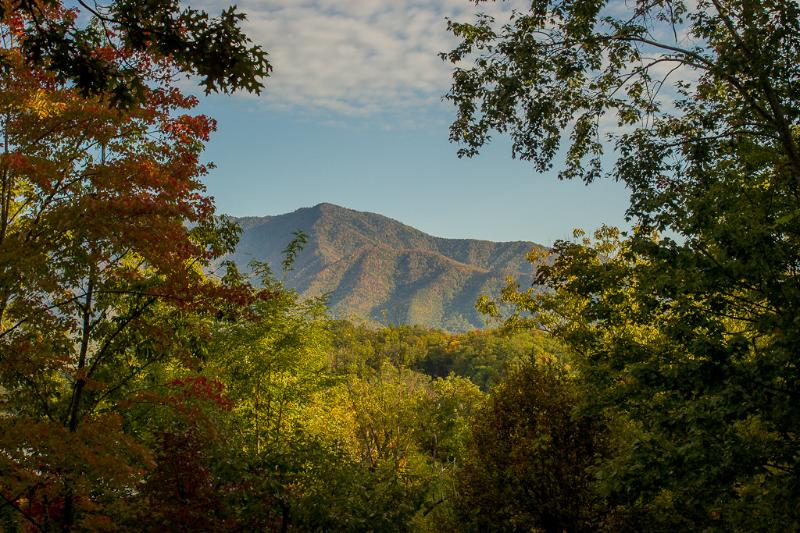 Wonderful views of famous Mount LeConte. One of the highest peaks in the Smoky Mountains!