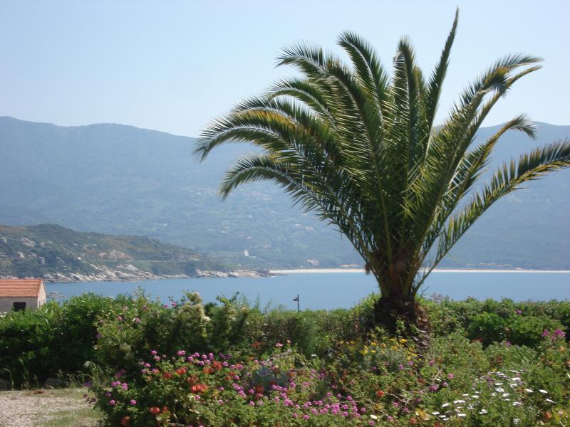 Corse du sud Tiuccia bord de mer, alquiler de vacaciones en Tiuccia