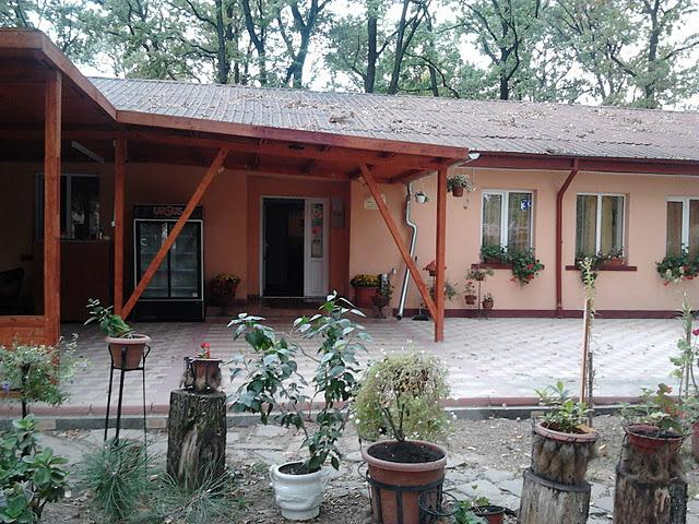Forest Mirage - group accommodation, alquiler vacacional en Targoviste