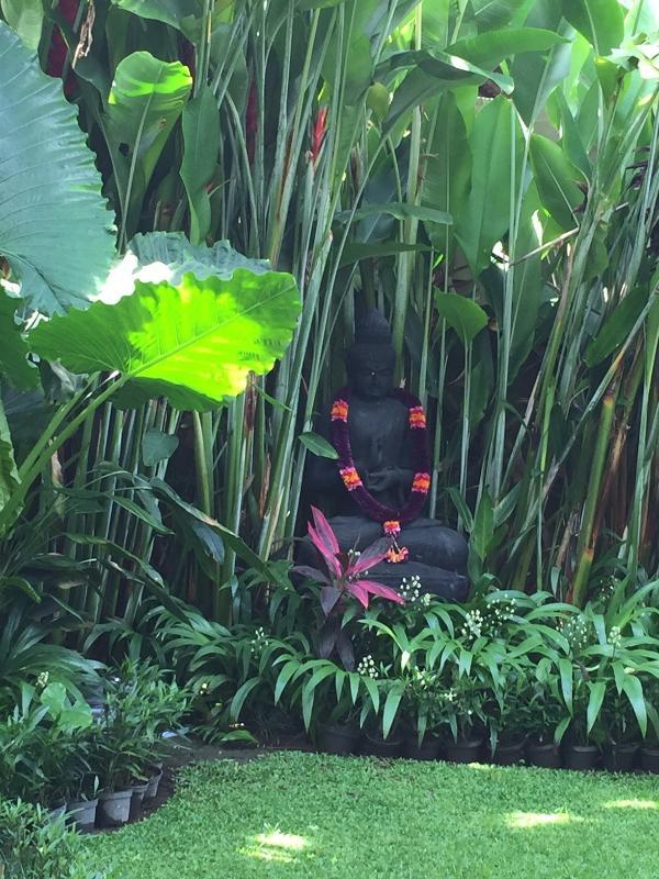 Notre Bouddha donnant sur le jardin luxuriant