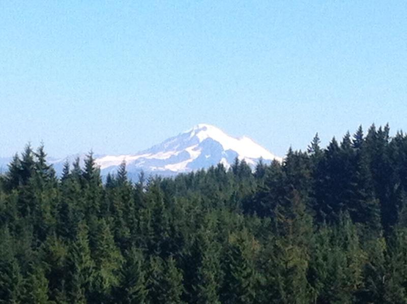 Mt. Baker from Chuckanut Mt. trail