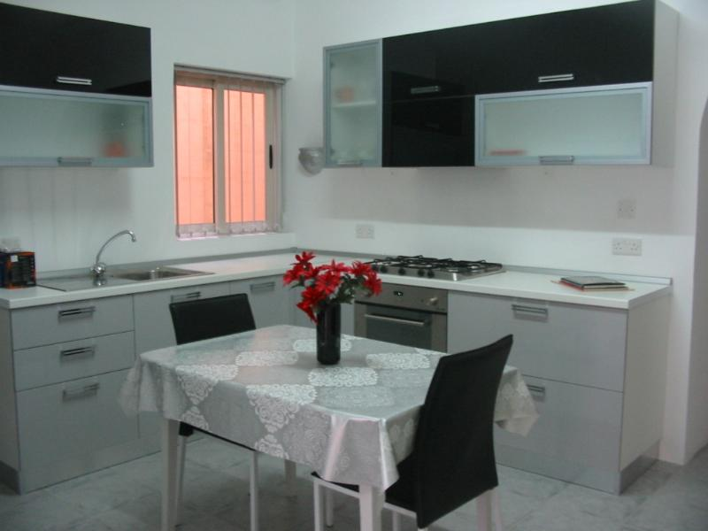 Spacious kitchen - all new appliances including fridge and microwave. Window overlooks central yard.