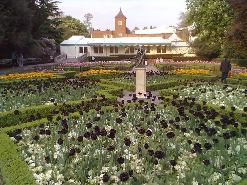 Beautiful entra nas proximidades lindo Holland Park