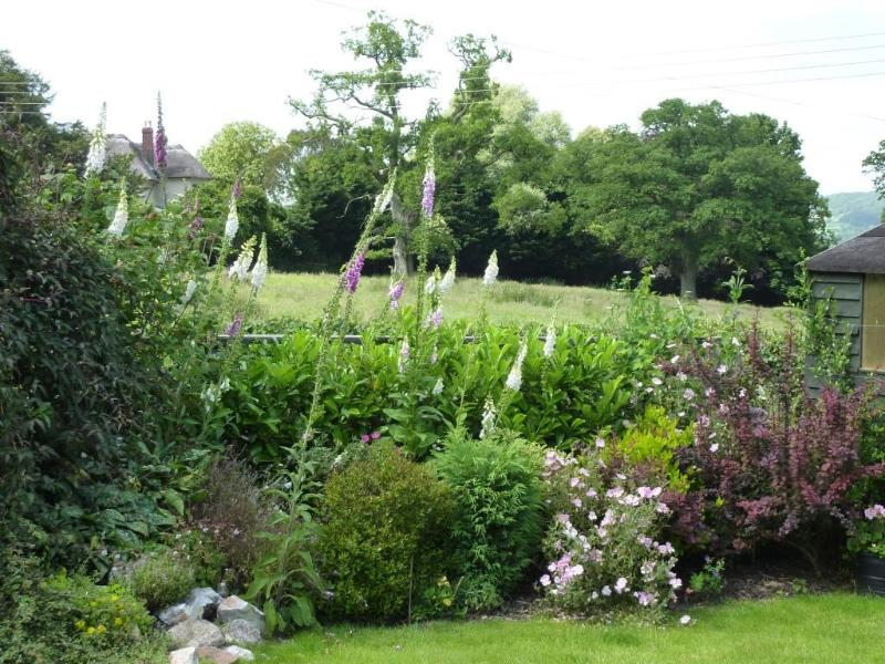 Cottage garden with country views